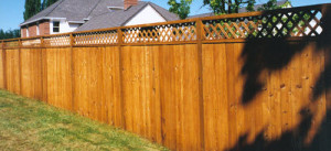 Fencing Contractor in Baltimore, MD