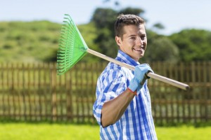 Fence and cleaning and maintenance